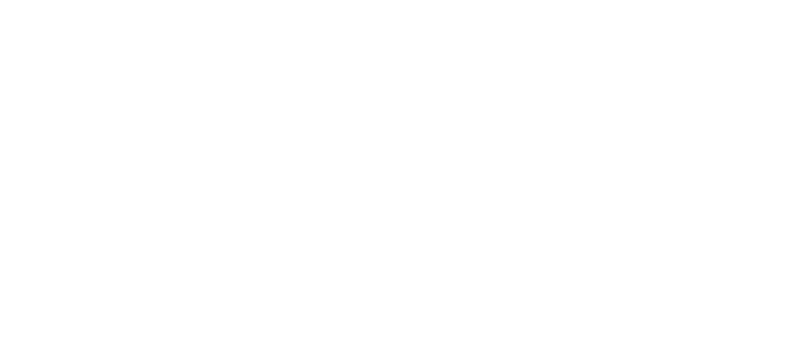 United Lunar Fleet